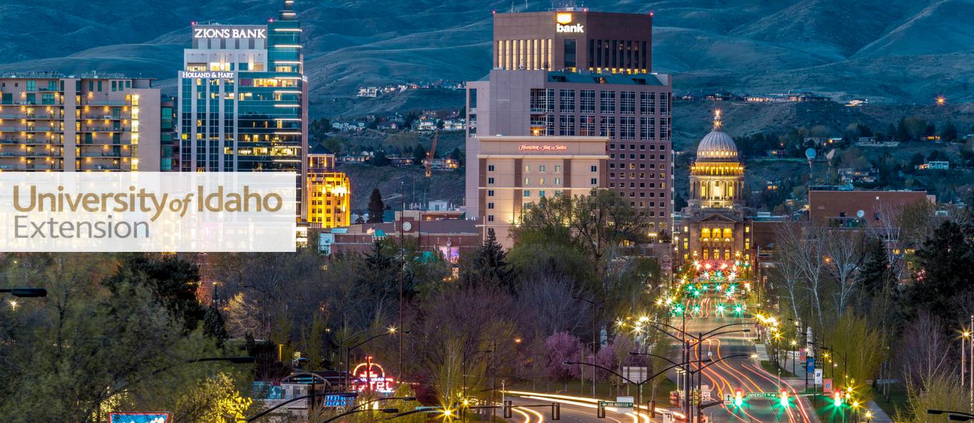 Idaho skyline at night