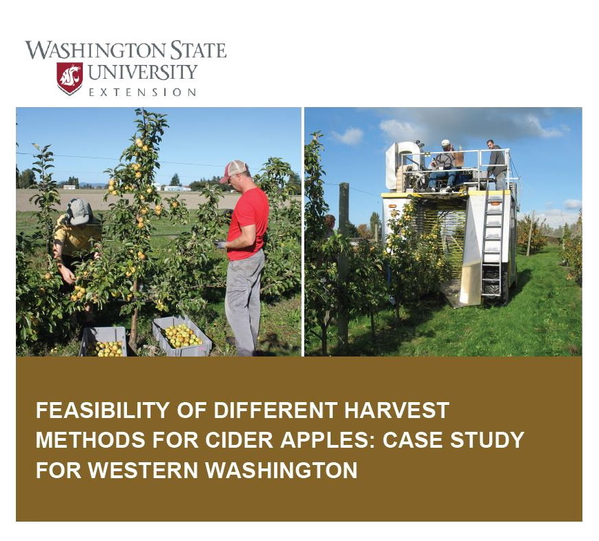 Picture of hand apple harvesting contrasted with mechanical harvesting.