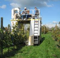 Small fruit harvester