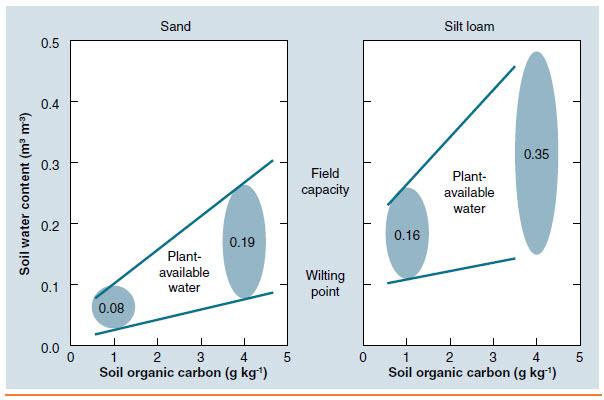 SOC-vs-soil-water