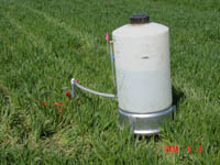 An infiltrometer in winter wheat.