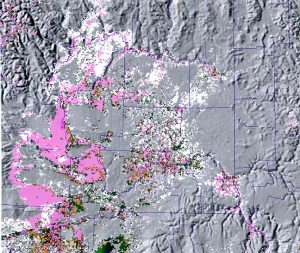 AVHRR image from June 1993. Landscape distribution of Shrub-Steppe and CRP.