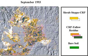 AVHRR image from September 1993. Landscape distribution of brown covers.