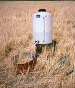 An inflitrometer in wheat stubble.