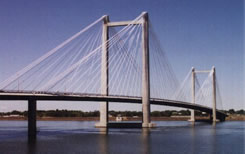 The Tri-Cities Cable Bridge.