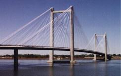 The Tri-Cities Cable Bridge.