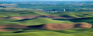 Aerial photo of the Palouse