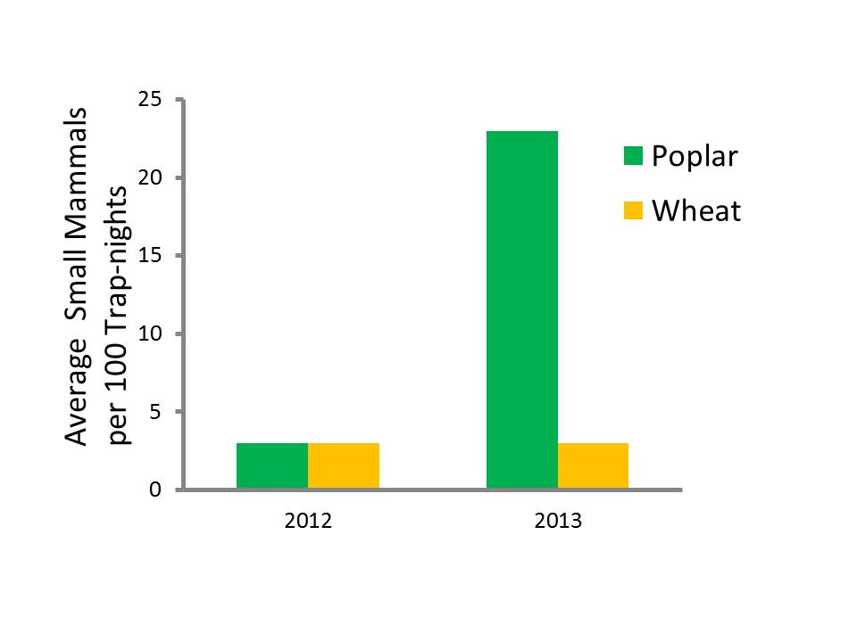 Bar graph comparing the number of mammals found in poplar verses wheat crops