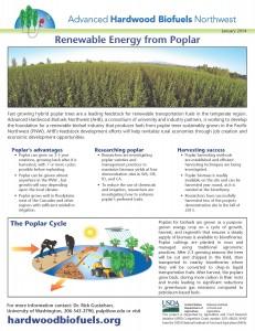 Renewable Energy from Poplar