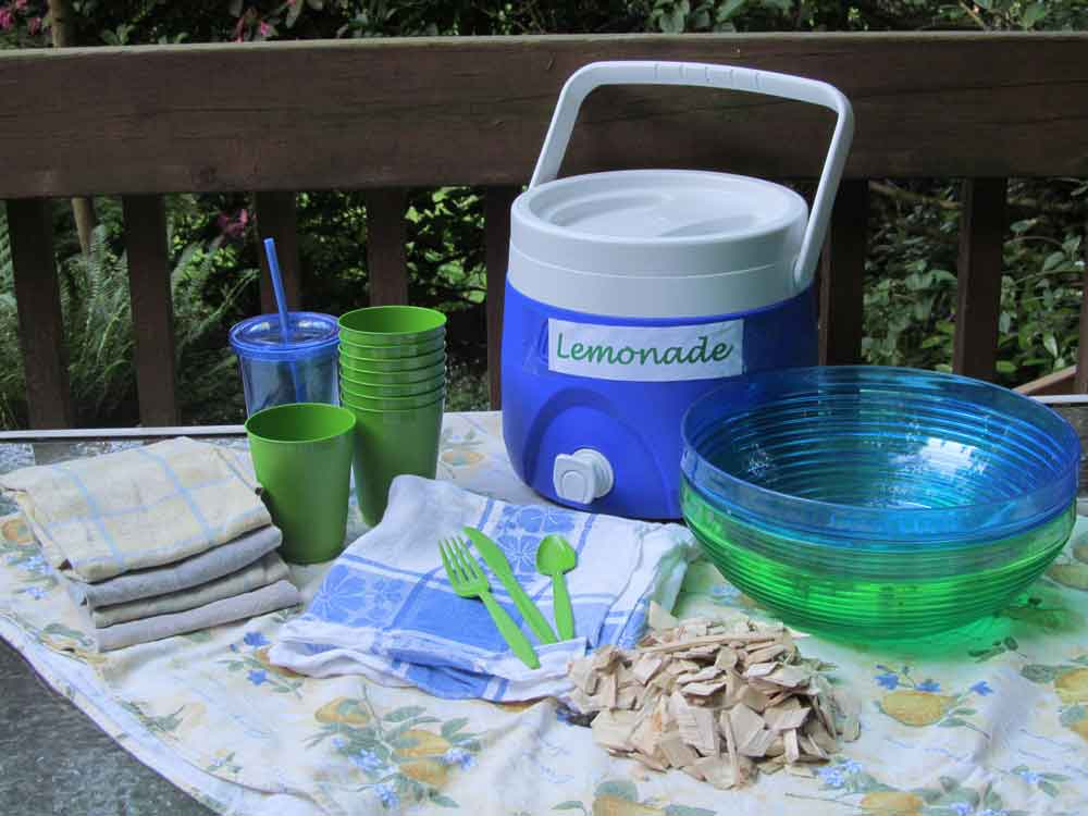 Plastic cups, plastic bowls, plastic utensils, and poplar wood chips sitting on a picnic table