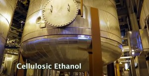 Watch the video Renewable Biofuels and biochemicals: Cellulosic Ethanol