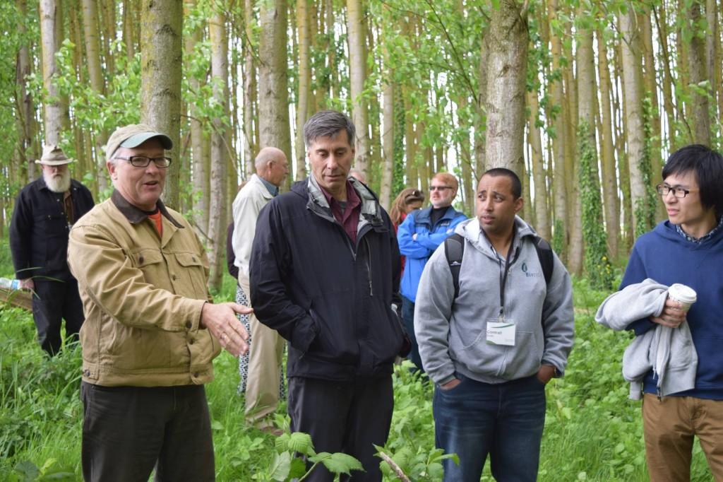 Attendees of the Poplar Willow Forum walking through the poplar trees