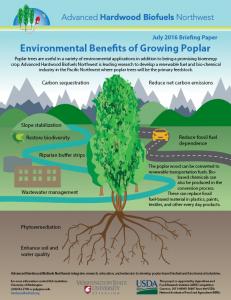 Environmental Benefits of Growing Poplar