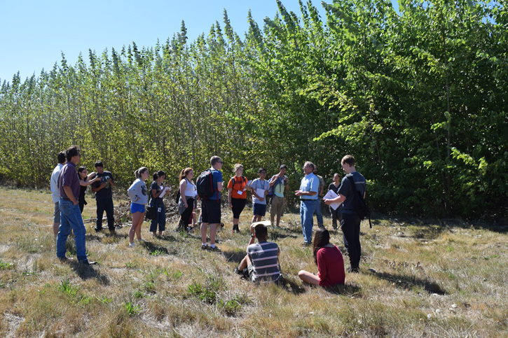 A group of students standing in front of the Jefferson Poplar trees with Brian Stanton from Greenwood Resources and Noelle Hart from WSU Extension.