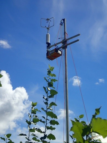 New technology to test for VOC levels in poplar farms