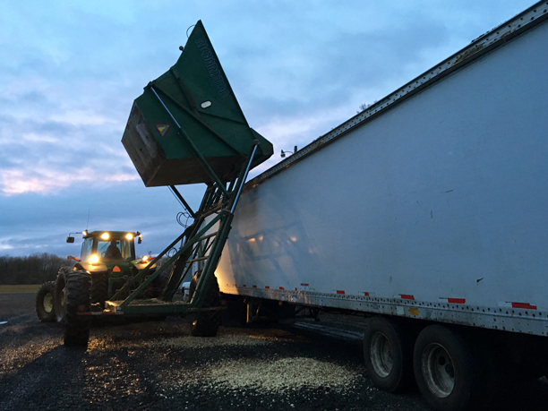 Dumping the chips from the farm wagon into the chip van .