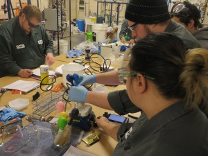 Students enrolled in the Plant Operations program at Walla Walla Community College are upgrading their technical knowledge/skills and graduating with jobs as technicians and operators.