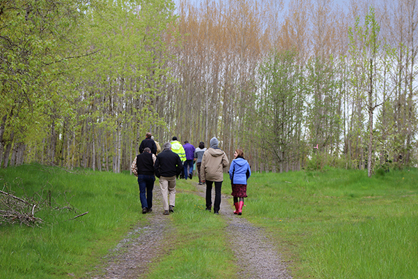 Patricia Townsend, representatives from GreenWood Resources, and others walking among the poplars grown at a landfill in Duvall, WA for waste management.