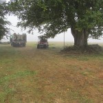 The Pilchuck field where we host tours, before the poplars were planted. Under a large pre-existing tree sit a red tractor and a truck of equipment to prepare the field for planting.