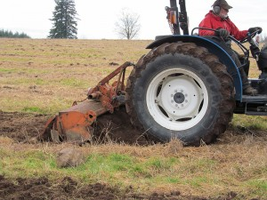 Up close view of a blue tractor with orange tool on the back to till the rows of soil in the Pilchuck field.