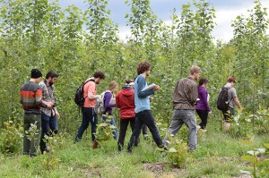 10 college students from Western Washington University walking through the tall and leafy poplars on an overcast day at the Pilchuck field site, taking pictures or making notes.