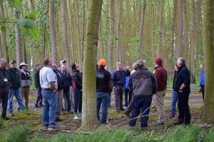 A large group of poplar, willow, wastewater, and other professionals stand in a grove of old poplar trees with thick trunks at the Woodburn, Oregon Wastewater Treatment Plant.