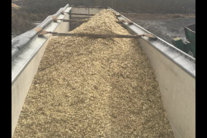 The poplar wood chips piled high in the truck that will transport them to the biorefinery.
