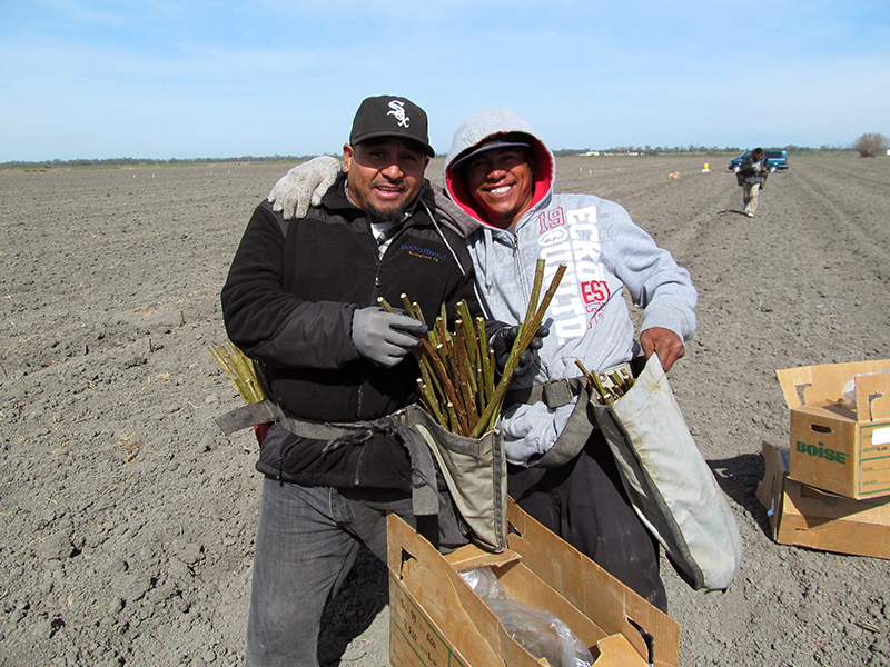 Two of the workers at the Clarksburg site pose for the camera with the poplar cuttings that are being planted.