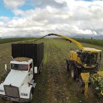 An aerial frontal view of the harvester and truck during the first harvest at the Hayden demonstration site.