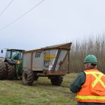 A GreenWood Resources employee in a green hard hat and orange safety vest looking at the green tractor that collects the wood chips from the harvester. The bare, coppiced poplar trees are in the background on the right.