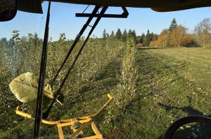 View through the windshield of the harvester as it turns to start another row at the Pilchuck demonstration site.