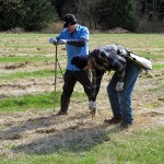 One worker at the Pilchuck site makes holes and another worker plants the poplar cuttings in the holes.