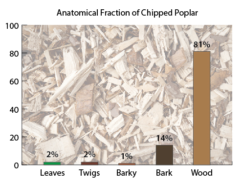Bar graph titled Anatomical Fraction of Chipped Poplar. Leaves 2%, Twigs 2%, Barky 1%, Bark 14%, Wood 81%