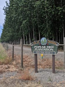 City of Chehalis Poplar Plantation Entrance