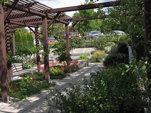 Shade Garden with a pergola