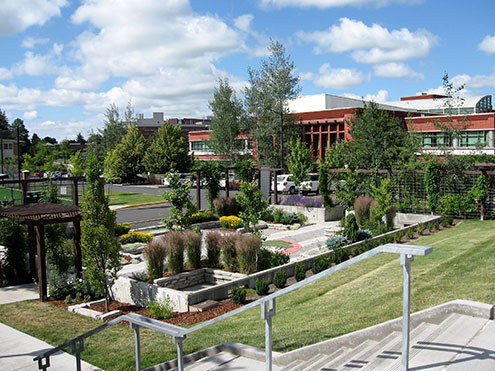 Open garden on campus with trees and brick buildings in the background
