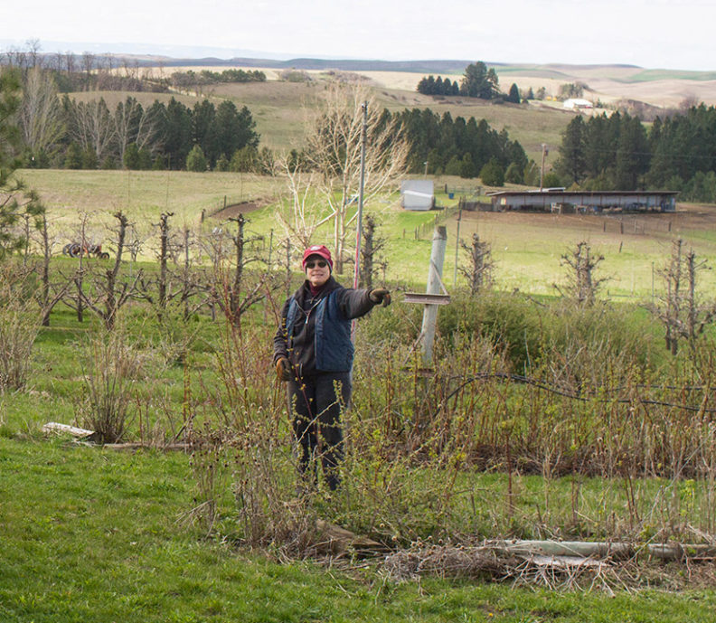 Person on a farm pointing