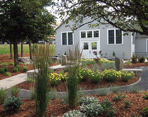 Garden with flowers, grasses, small trees, and mulch