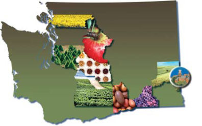 An outline of the state of Washington with images of regional crops.