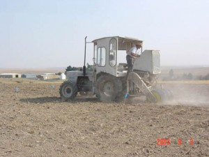 This is an image of planting winter wheat.
