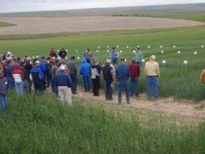 This is an image of a crowd listening to Mike Pumphrey at Field Day.