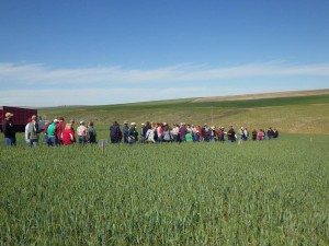 This is an image of a field tour group at the 2013 Field Day.