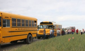 This is an image of buses at Field Day in 2014.