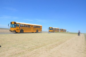 School buses transporting people to the field tours.