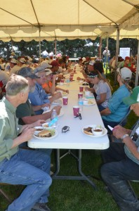 People having lunch at Field Day