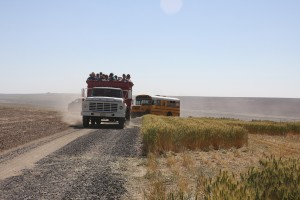 people being transported to the field tours in a wheat truck and buses.