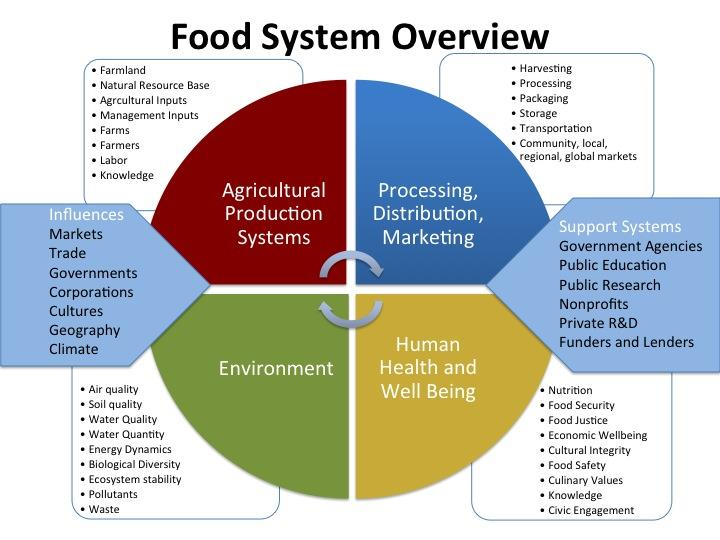 Food System Overview