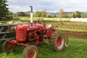 Farmall Super A tractor set up for cultivation. Photo: D. Collins.