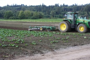 Offset disk for primary or secondary tillage. Photo: C. Benedict.