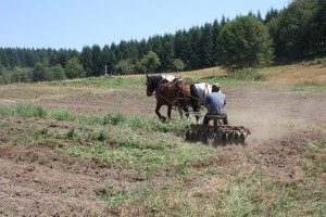 Horse-drawn disc, Yacolt Mountain Farm. Photo: D. Collins.